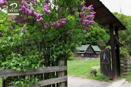 Pensiunea Dacica din satul Alun – Hunedoara
