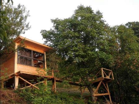 Tree Cottage din judetul Hunedoara