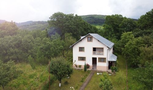 Zen Casa